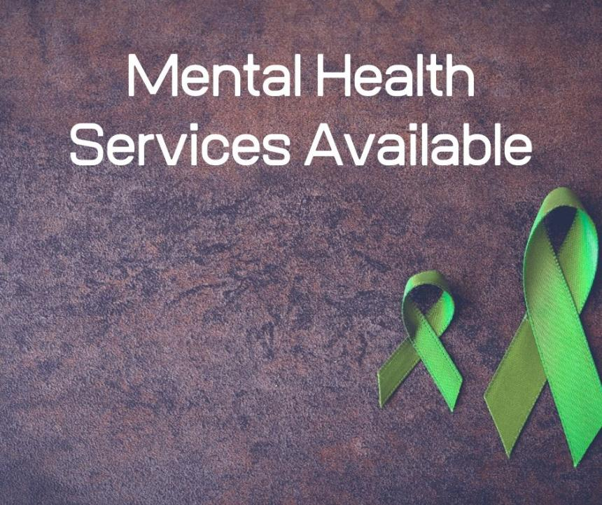 Mental Health Services Graphic